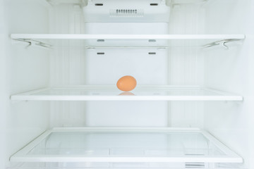 One egg in a fridge, Shortage