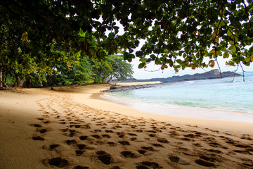 Under the shade of a tree in a beautiful beach with clear water in Sao Tome and Principe Island, in Africa