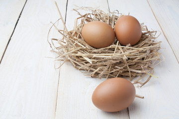 egg in nest on dark vintage wooden