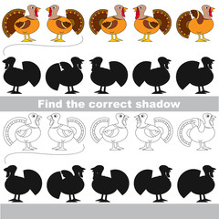 Find correct shadow for each object, the kid game.