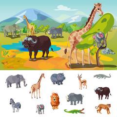 African Wildlife Concept