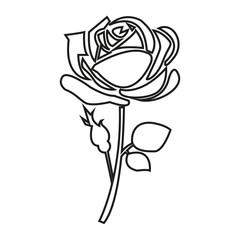 Thin line rose icon