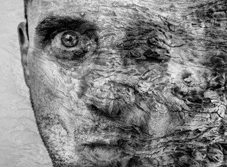 Amazing metamorphosis of man becoming tree, graphic art, beautiful and unique tree bark texture on human face, ravages of time on skin and epidermis,  experimental metaphysics, cover book background