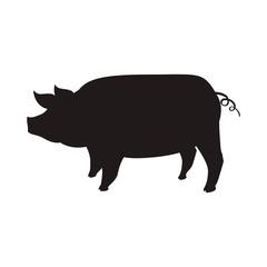 Pig farm animal vector illustration graphic design