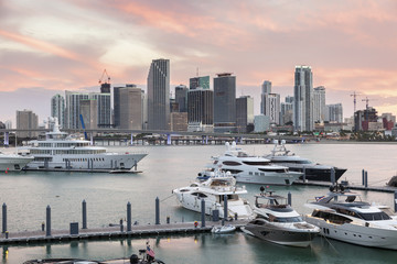 Wall Mural - Miami skyline at dusk