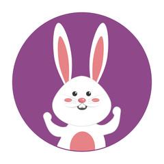 nice happy rabbit cartoon design