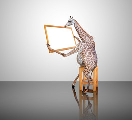 Giraffe sitting holding a board sign.Photo combination concept.