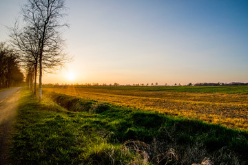 sunset view with different colors field