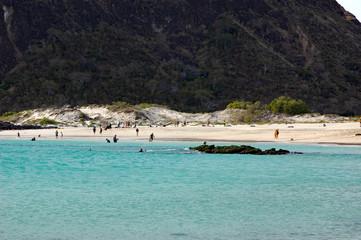 people enjoying the pristine beach at  Cerro Brujo beach in Galapagos
