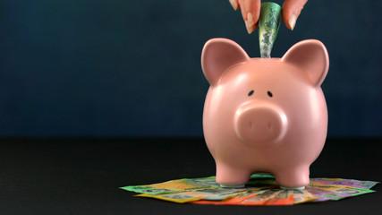 Pink Piggy bank money concept on dark blue background
