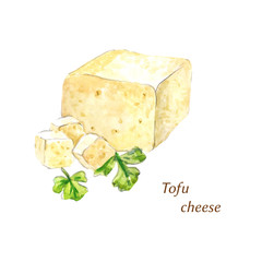Watercolor tofu cheese
