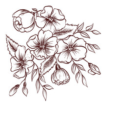 Wild rose flowers and branches with leaves. Hand drawn vector illustration.