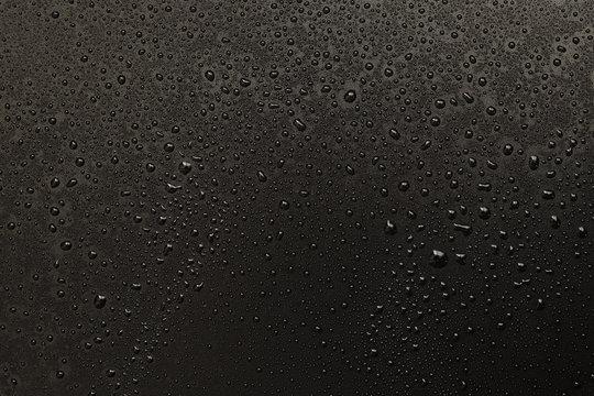 water drops on black background. Macro.
