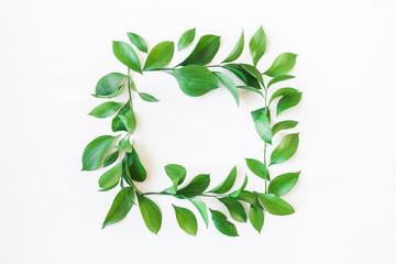 Frame made of green leaves. Leaf pattern. Flat lay, top view
