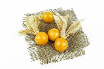 Fresh golden cape gooseberry, physalis