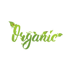 Organic. Hand drawn logo with leaves and ladybugs. Friendly Eco lettering