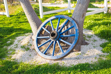 wooden wheel on a background of green grass