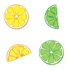 lemon and lime, sketch, vector illustration