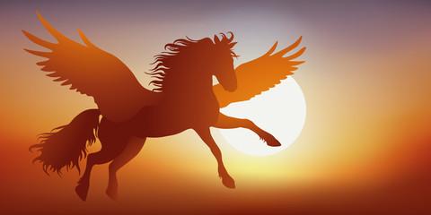Pégase - mythologie - cheval ailé - imaginaire - fantastique - légendaire -  Coucher de soleil
