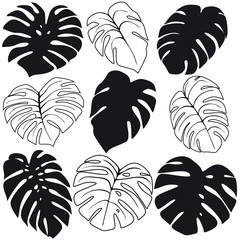 Set of tropical leaves silhouettes isolated on white background. Vector EPS10