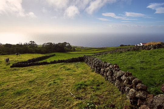 View towards the sea on a beautiful afternoon on island Terceira, Azores, Portugal