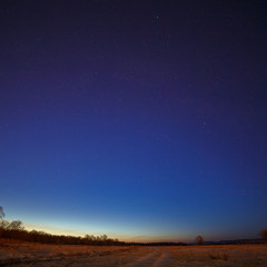Starry sky on a background of the morning dawn.