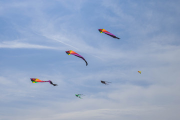 Rainbow Delta Kite Isolated on White with Clipping Path