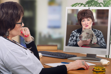Telemedicine veterinary services