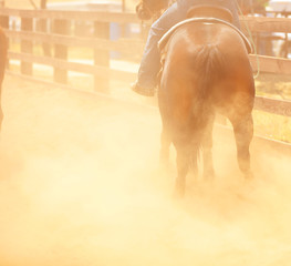 A horse and cowboy at the rodeo with dust flying in a blurred background.