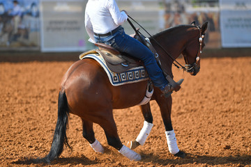 A rear view of a rider sliding the horse in the dirt