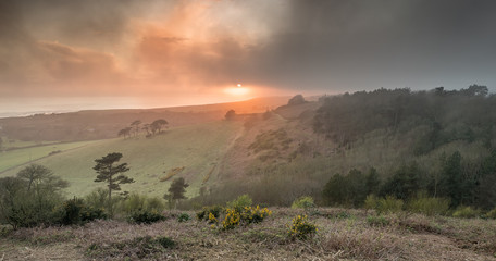 A foggy sunset at Mottistone Common, Isle of Wight