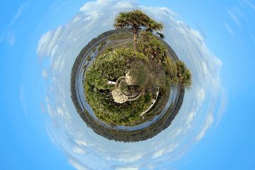 Nature Outdoors Park Tiny Planet