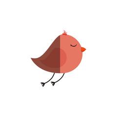 cute bird isolated icon vector illustration design
