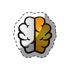 brain human creative icon vector illustration design