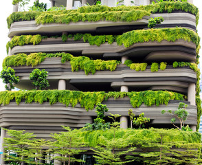 Green parking in modern city of Singapore