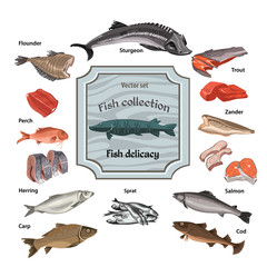 Hand Drawn Colored Seafood Collection