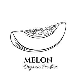 Hand drawn melon icon.