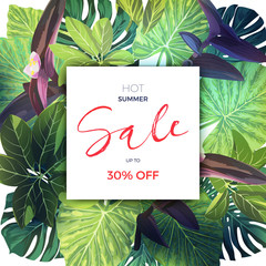 Summer tropical sale design with palm leaves and exotic plants. Jungle vector floral template.