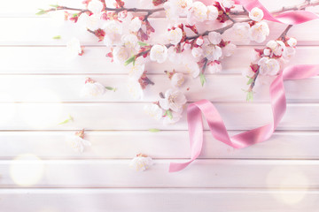 Klistermärke - Spring blossom on white wooden plank background. Pink blooming apricot flowers