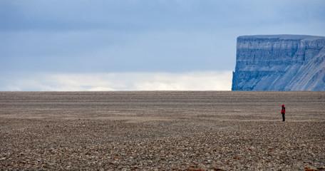 Caswell Tower, Radstock Bay, DEvon Island Wall mural