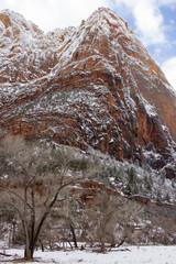 Winter Snow in Zion