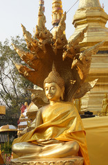 Side of sitting Thai Buddha with Naga statue that wear golden clothes.