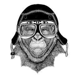 Vintage images of gorilla monkey for t-shirt design for motorcycle, bike, motorbike, scooter club, aero club