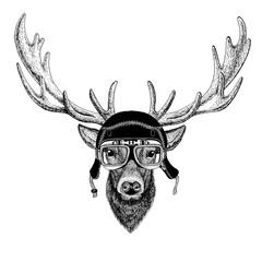 Vintage images of DEER for t-shirt design for motorcycle, bike, motorbike, scooter club, aero club