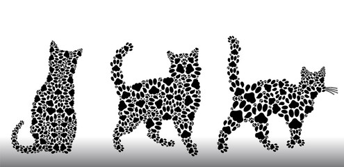 Set of silhouettes of cats from the cat tracks