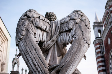 angel statue with wings in a cemetery