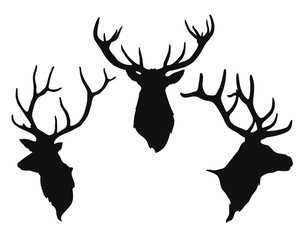 silhouettes of the buck's heads
