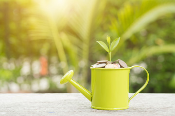 Plant Growing In Savings Coins on wooden - Investment And Interest Concept.