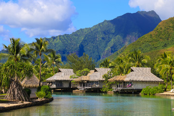 Island of Moorea in the French Polynesia with her exuberant vegetation, lagoon, bungalows and mountains.
