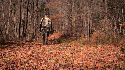 Photo sur Plexiglas Chasse Walk into the Woods. Archery hunting big woods. Hunter walking through the woods with gear